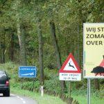 Wildroosters-Nationaal-Park-Hoge-Kempen-Maasmechelen-Belgie